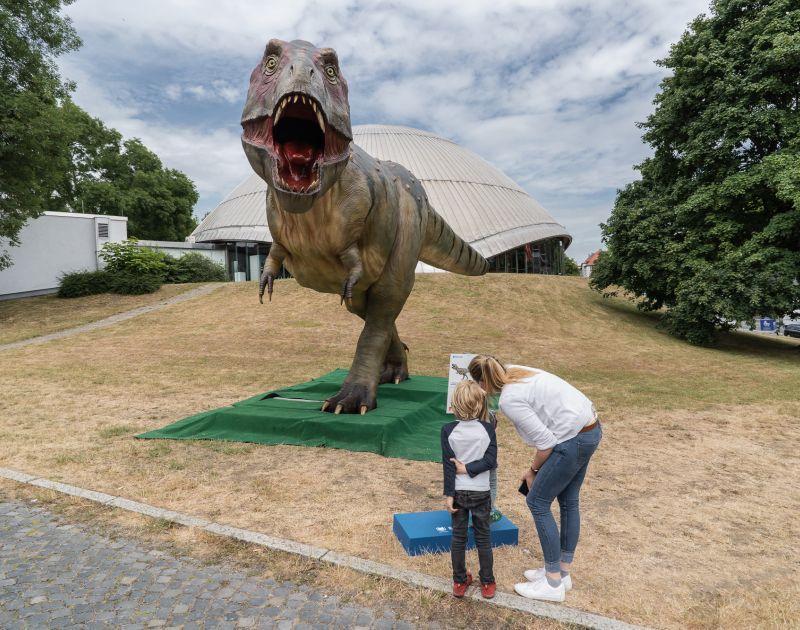 Aufbau der Dino City Bochum